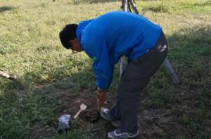 公园土壤检测